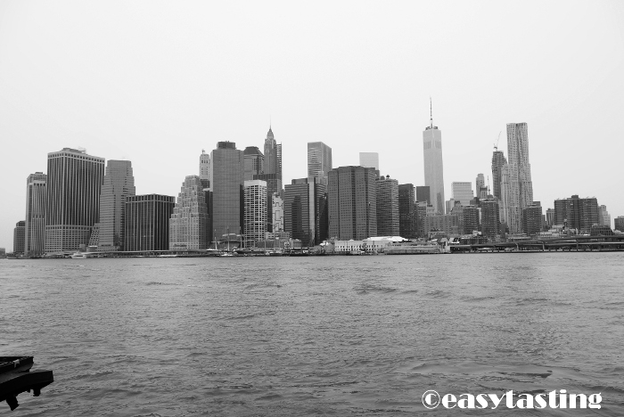 New York Manhatten Skyline